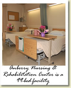 About Anberry Rehabilitation Hospital